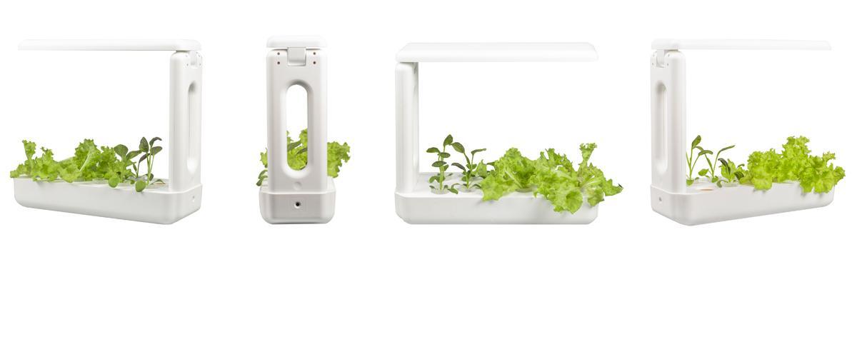 Vegebox Kitchen Indoor Hydroponic Garden